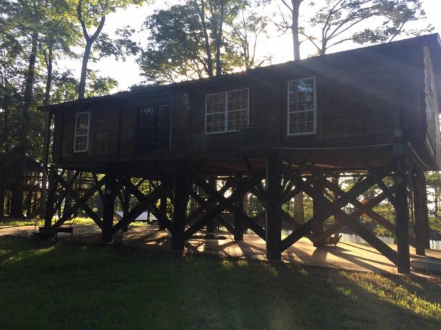 00 Chisholm Lake Spur Rd, Ripley, TN 38063 (#10010119) :: The Melissa Thompson Team