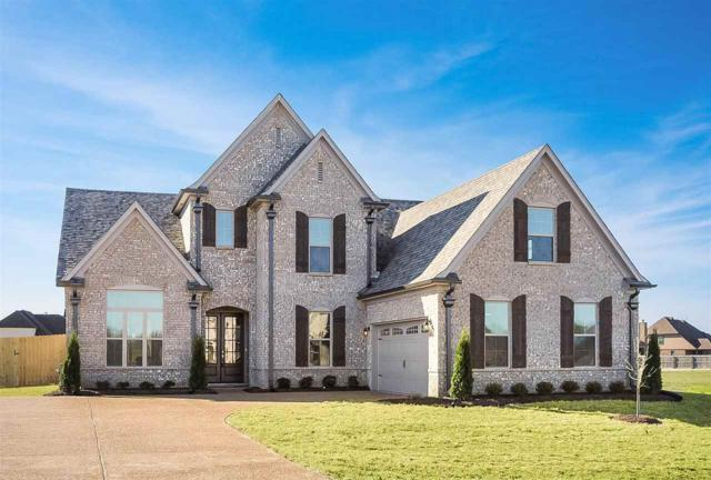 7765 Wisteria Dr, Olive Branch, MS 38654 (#10013843) :: The Melissa Thompson Team