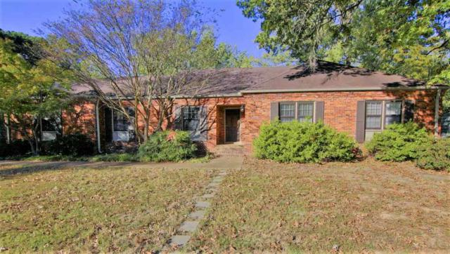 5280 Sycamore Grove Ln, Memphis, TN 38120 (#10014373) :: The Wallace Team - RE/MAX On Point