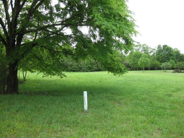 115 Cedar Hill Cv, Somerville, TN 38068 (#10000865) :: The Wallace Team - RE/MAX On Point