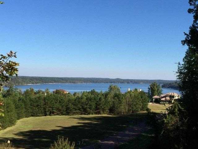 20 Riviera And Shipwatch Pt, Pickwick Lake, TN 38372 (#10005470) :: The Wallace Team - RE/MAX On Point