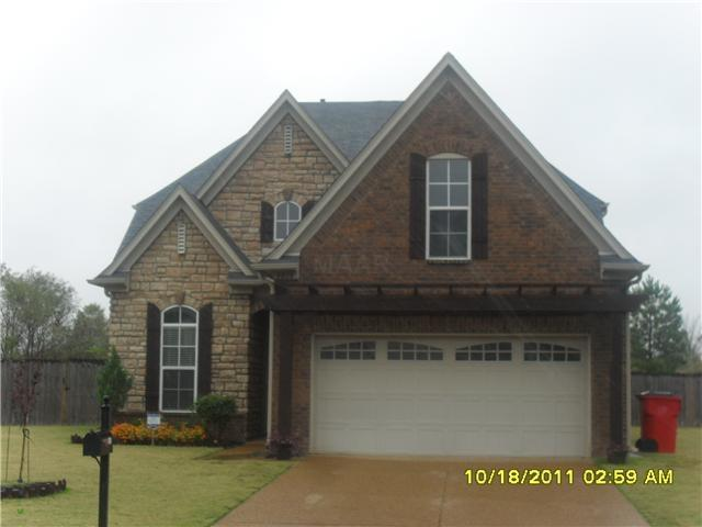 4818 Saddlehorn Cv, Unincorporated, TN 38125 (#10007675) :: RE/MAX Real Estate Experts