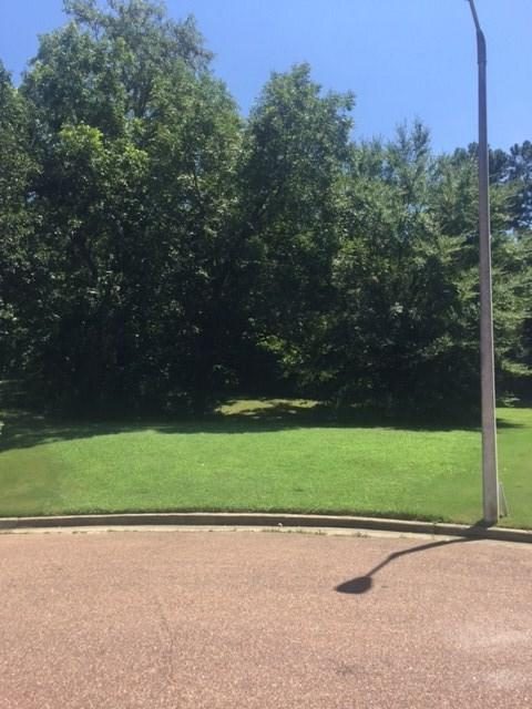 380 Hound Hill Pl, Collierville, TN 38017 (#10008205) :: The Wallace Team - RE/MAX On Point