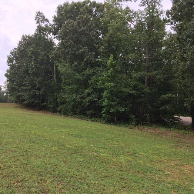LOT 424 Dunhill Ct, Counce, TN 38326 (#10009121) :: The Melissa Thompson Team