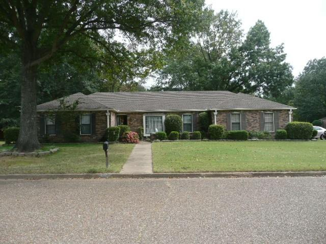 3846 Wind Valley Dr, Memphis, TN 38125 (#10011833) :: RE/MAX Real Estate Experts