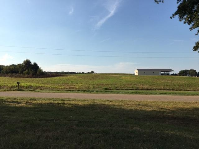 565 Shoaf Rd, Unincorporated, TN 38019 (#10012416) :: ReMax Experts