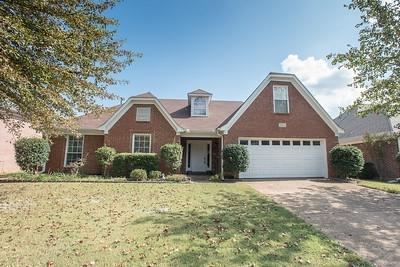1318 E Rain Lake Ln, Collierville, TN 38017 (#10013785) :: The Wallace Team - RE/MAX On Point