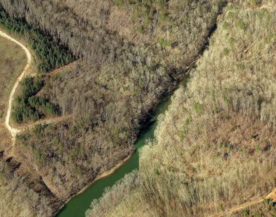 256 Haw Branch Loop - Photo 1
