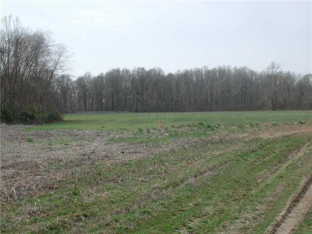 0 Hwy 196 Highway Hwy, Unincorporated, TN 38002 (#10015614) :: Eagle Lane Realty
