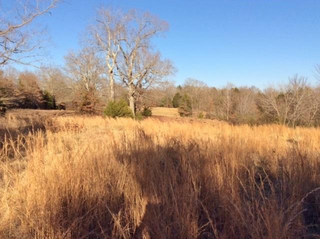 1918 Pocahontas Rd, Pocahontas, TN 38061 (#10017152) :: RE/MAX Real Estate Experts