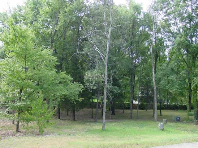 68 Vine Grove Ln, Memphis, TN 38018 (#10017456) :: The Melissa Thompson Team