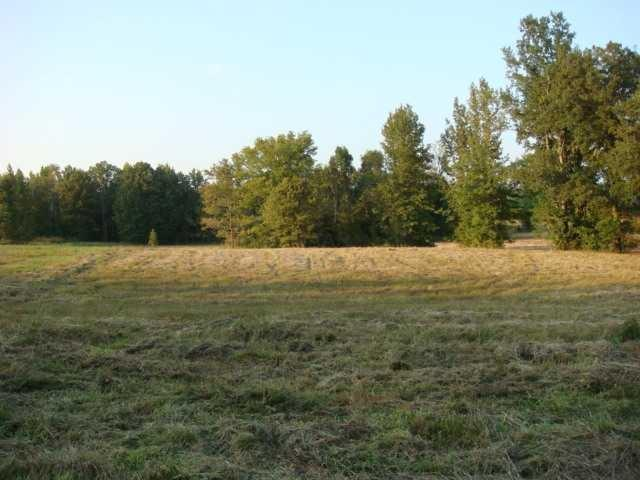 LOT #7 Hwy 193 Hwy, Unincorporated, TN 38017 (#10019201) :: The Wallace Team - RE/MAX On Point