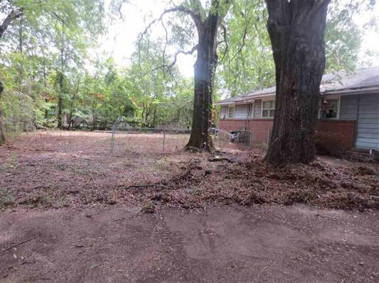 5590 Pleasant View Dr, Memphis, TN 38134 (#10023338) :: RE/MAX Real Estate Experts