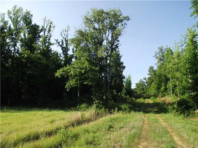 29 Charles Ward Way, Selmer, TN 38375 (#10030030) :: RE/MAX Real Estate Experts