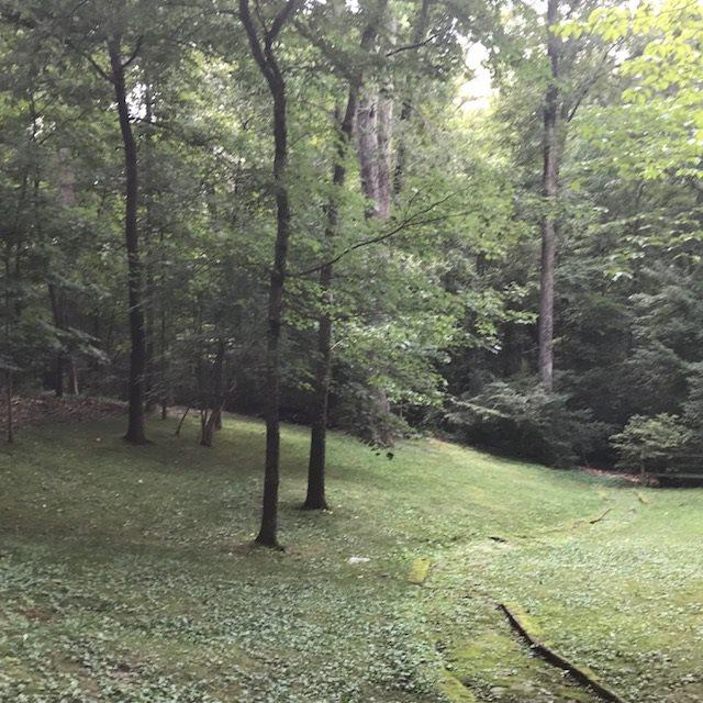 6055 Blakely Cv, Memphis, TN 38120 (#10030113) :: The Home Gurus, PLLC of Keller Williams Realty