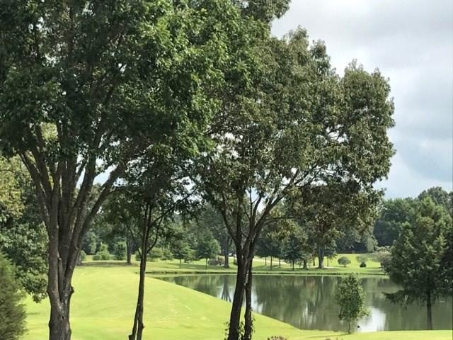 1 Cypress Lake Cv, Arlington, TN 38002 (#10030311) :: The Melissa Thompson Team