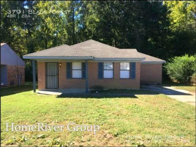 3791 Black Forrest St, Memphis, TN 38128 (#10034992) :: ReMax Experts