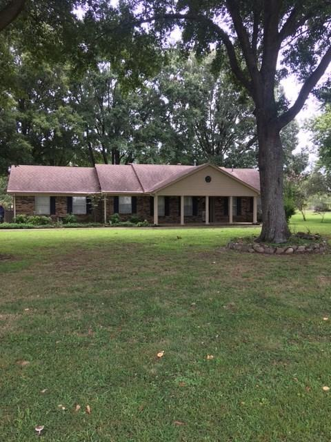 8066 Donnell Rd, Memphis, TN 38053 (#10036834) :: ReMax Experts