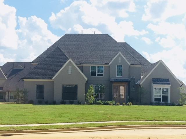 535 Tender Oaks Cv, Collierville, TN 38017 (#10039106) :: The Melissa Thompson Team