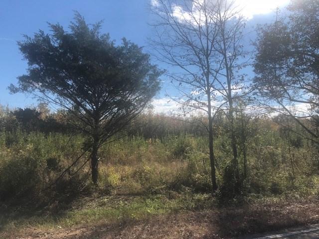 1 Grass Pond Rd, Hernando, MS 38632 (#10040155) :: JASCO Realtors®