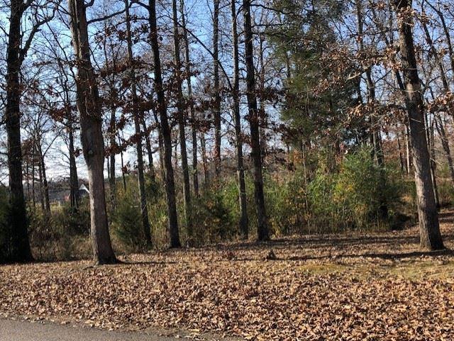 0 Robin Hood Loop, Savannah, TN 38372 (#10041963) :: The Melissa Thompson Team