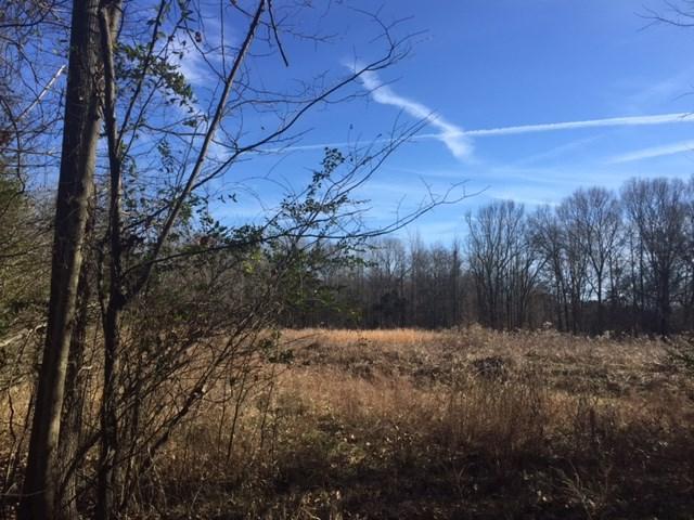 Woodland Trace Ln, Cordova, TN 38018 (#10046293) :: The Melissa Thompson Team