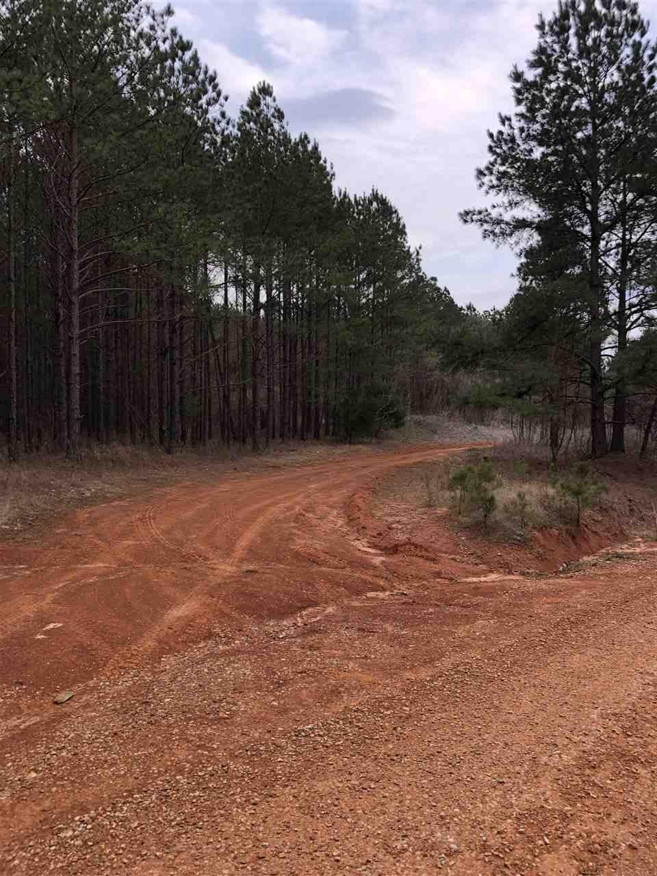 County Road 724 Rd - Photo 1
