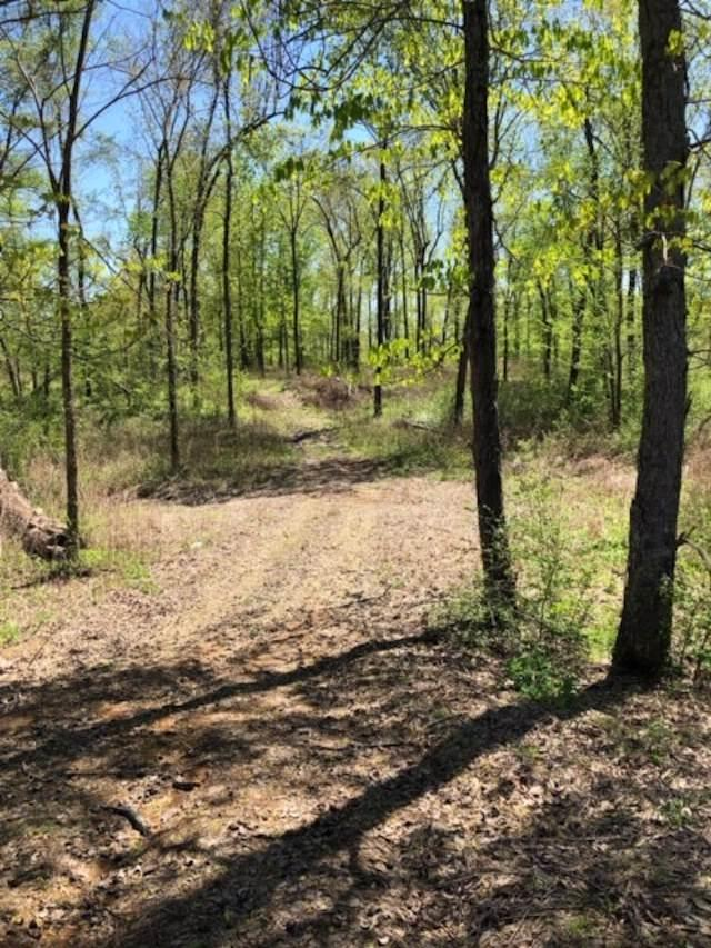 Robins Hill Ln, Whiteville, TN 38075 (#10050801) :: ReMax Experts