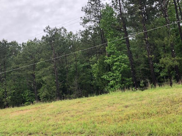 57 Hwy, Michie, TN 38357 (#10053089) :: ReMax Experts