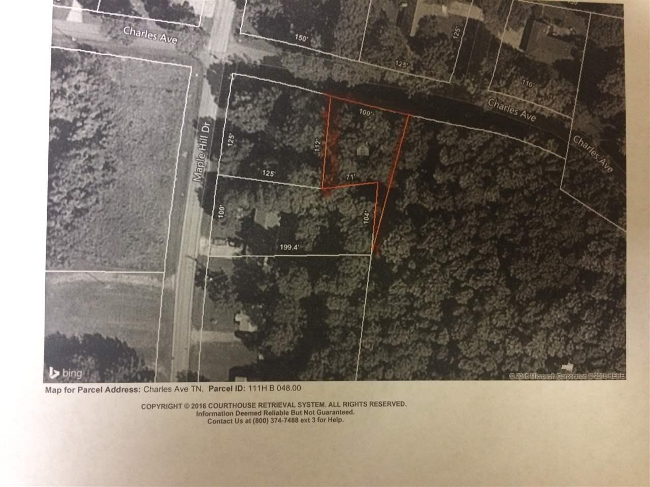 LOT 14 Charles Ave - Photo 1
