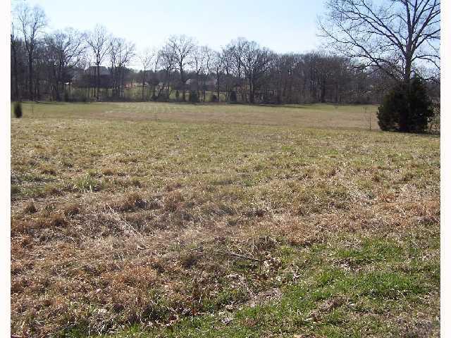 0 Albert Sidney Johnston Rd, Adamsville, TN 38310 (#10055405) :: RE/MAX Real Estate Experts
