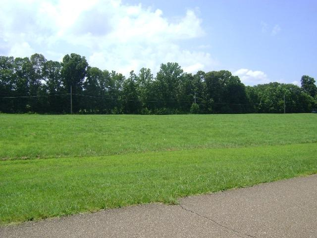 11715 Stable View Dr, Unincorporated, TN 38028 (#10057450) :: ReMax Experts