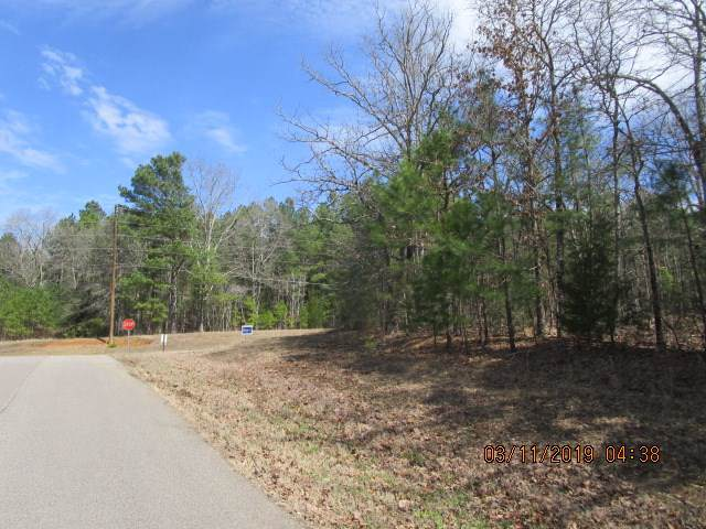 Circle Hill Dr, Selmer, TN 38375 (#10061975) :: J Hunter Realty