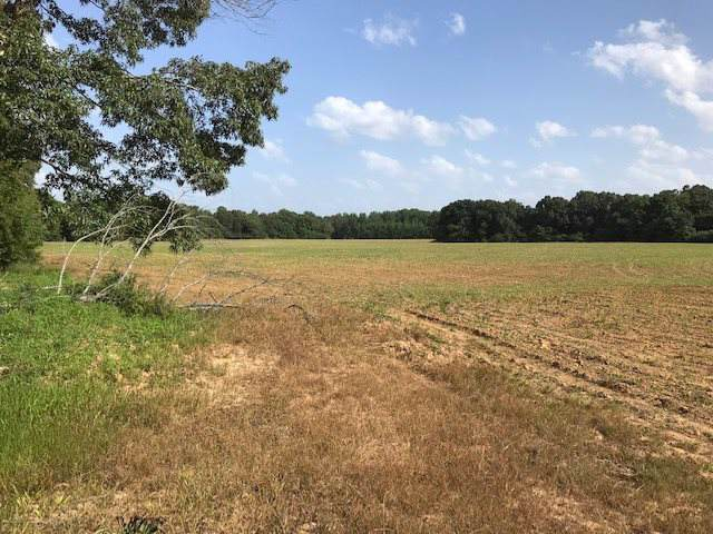 2055 May Rd, Whiteville, TN 38075 (#10062223) :: The Wallace Group - RE/MAX On Point