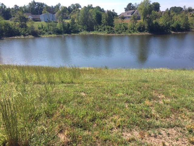 9 Lake Cv, Unincorporated, TN 38023 (#10063482) :: All Stars Realty