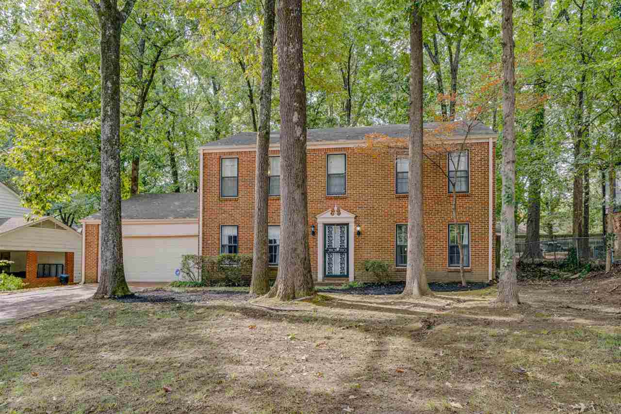 6201 Quince Rd - Photo 1