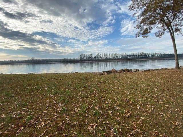 615 Vista River Dr, Morris Chapel, TN 38361 (#10065951) :: RE/MAX Real Estate Experts