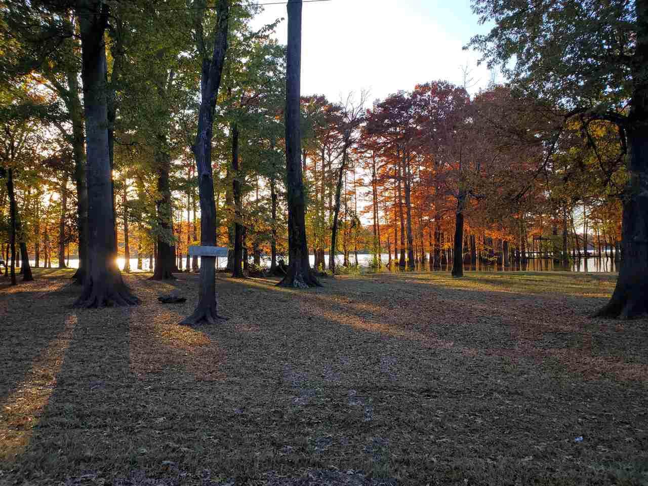 43 Chisholm Lake Rd - Photo 1