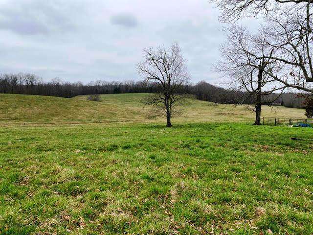 2365 Neely Rd, Middleton, TN 38052 (#10071056) :: RE/MAX Real Estate Experts