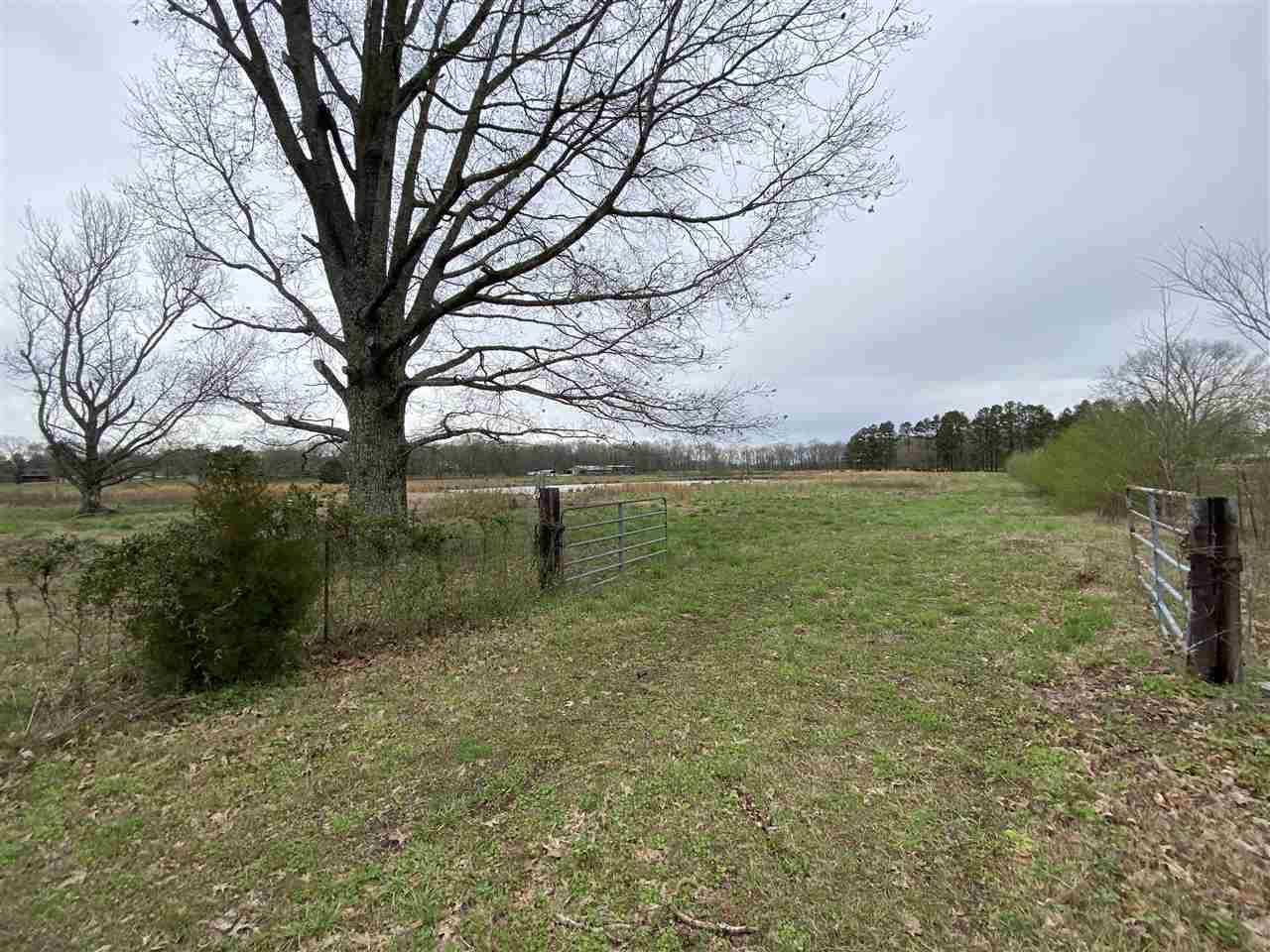 00 Clay Pond Rd - Photo 1