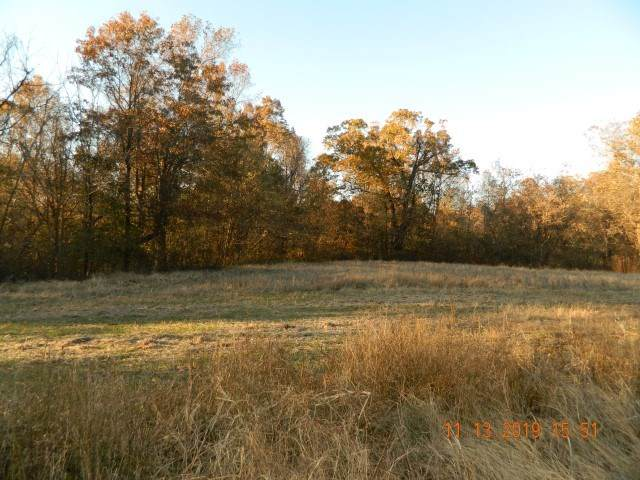 LOT 7 Dolan Rd, Unicorp/Drummonds, TN 38023 (#10073795) :: All Stars Realty
