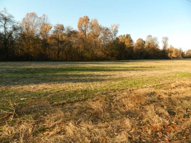 LOT 1 Dolan Rd, Unicorp/Drummonds, TN 38023 (#10073799) :: All Stars Realty
