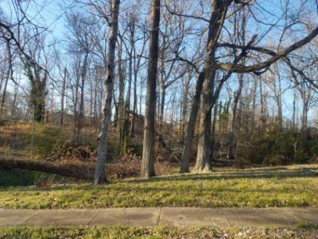 0 Annette Ln, Memphis, TN 38127 (#10074955) :: Bryan Realty Group