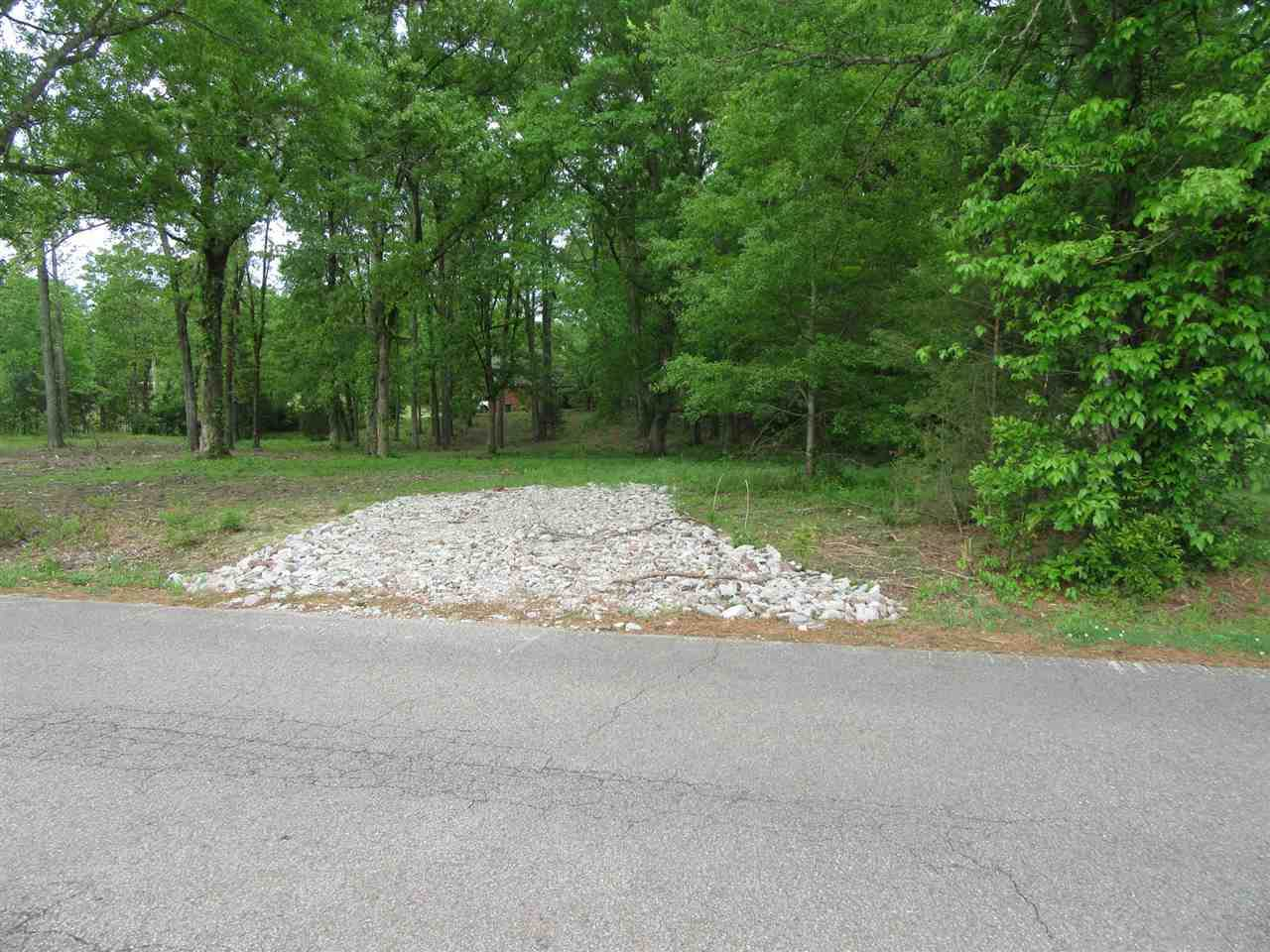 0 Caney Branch Rd - Photo 1