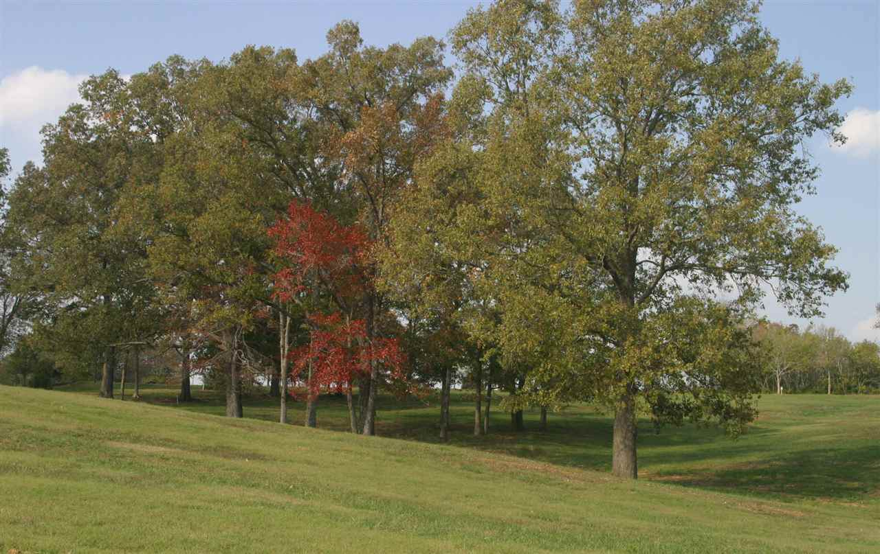 0 Grand Oaks Cv - Photo 1