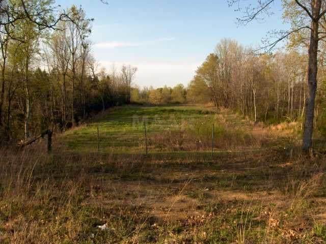 576 W Holmes Rd, Memphis, TN 38109 (MLS #10077128) :: Gowen Property Group | Keller Williams Realty