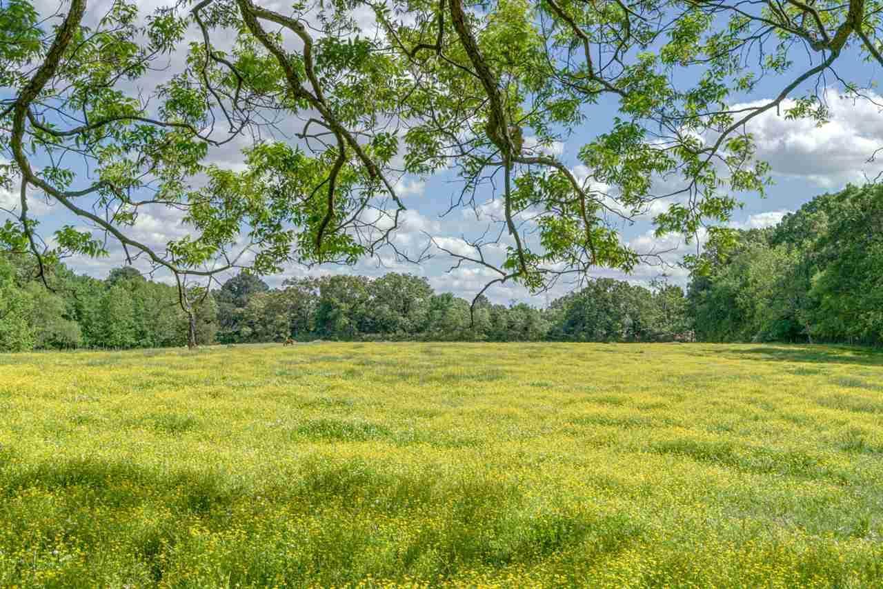 996 Sanga Rd - Photo 1