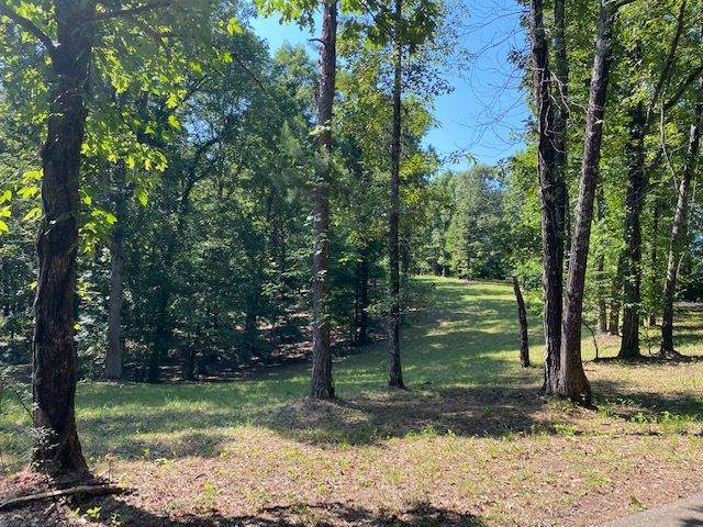 LOT 39 Sandbar Ln & Riverdale Rd, Counce, TN 38326 (#10080204) :: J Hunter Realty