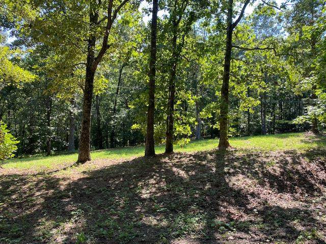 LOT 40 Riverdale Rd, Counce, TN 38326 (#10080205) :: J Hunter Realty