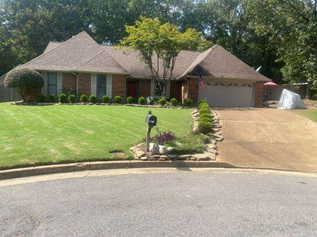 8862 Cherrywood Cv, Memphis, TN 38018 (#10085281) :: J Hunter Realty